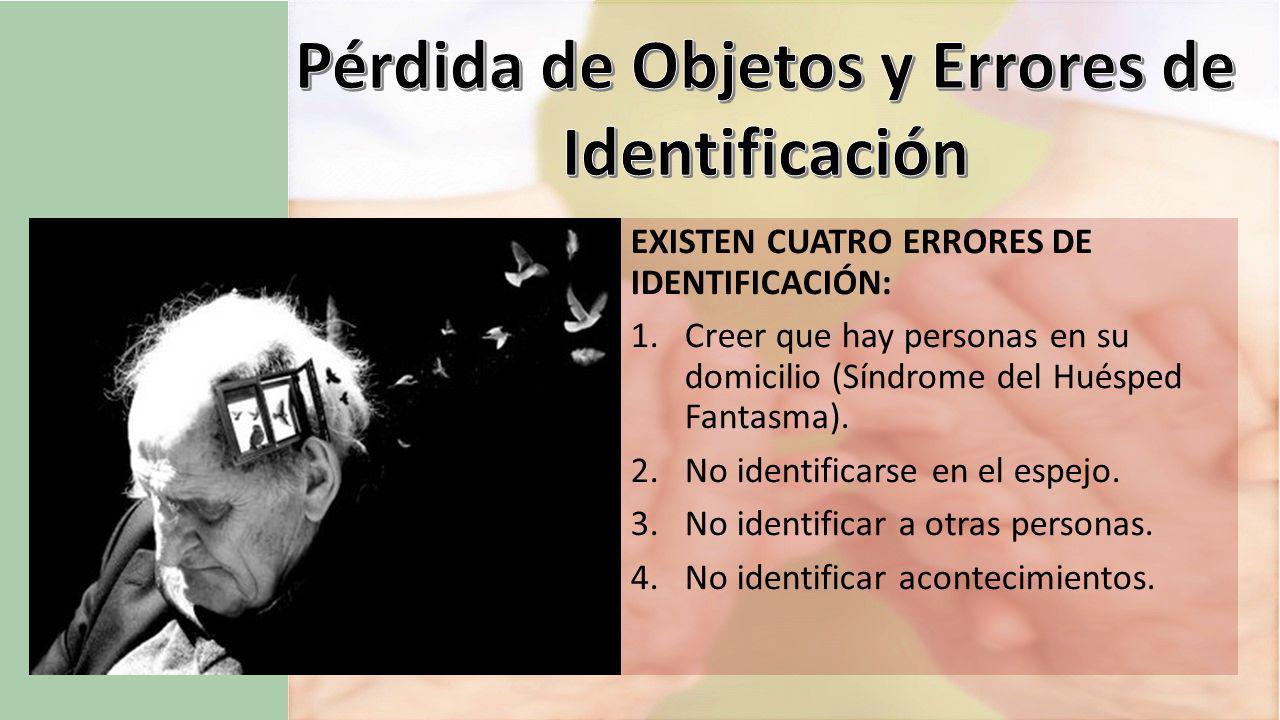 Pérdida de Objetos y Errores de Identificación