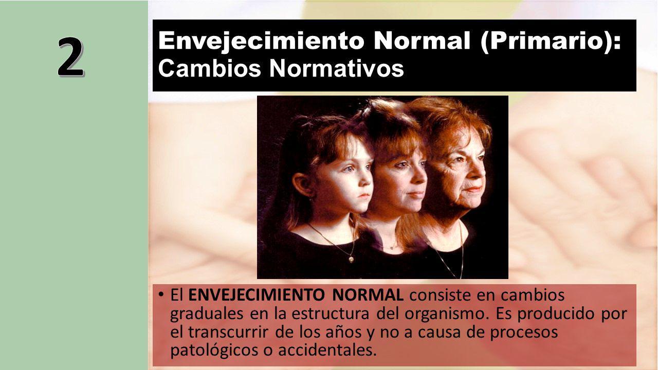 Envejecimiento Normal (Primario): Cambios Normativos
