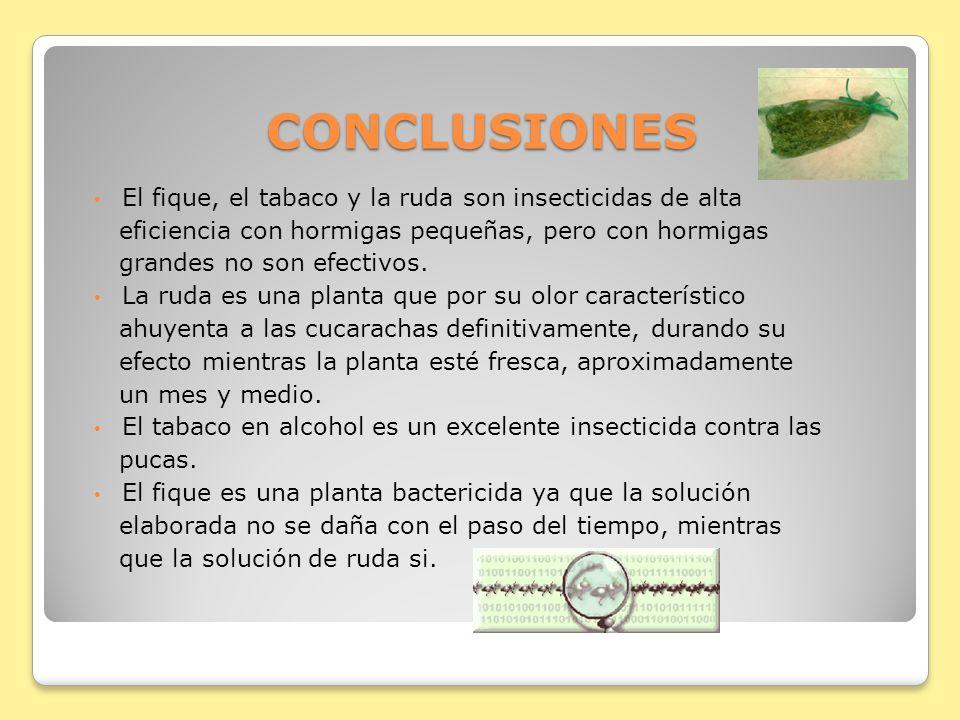 CONCLUSIONES El fique, el tabaco y la ruda son insecticidas de alta