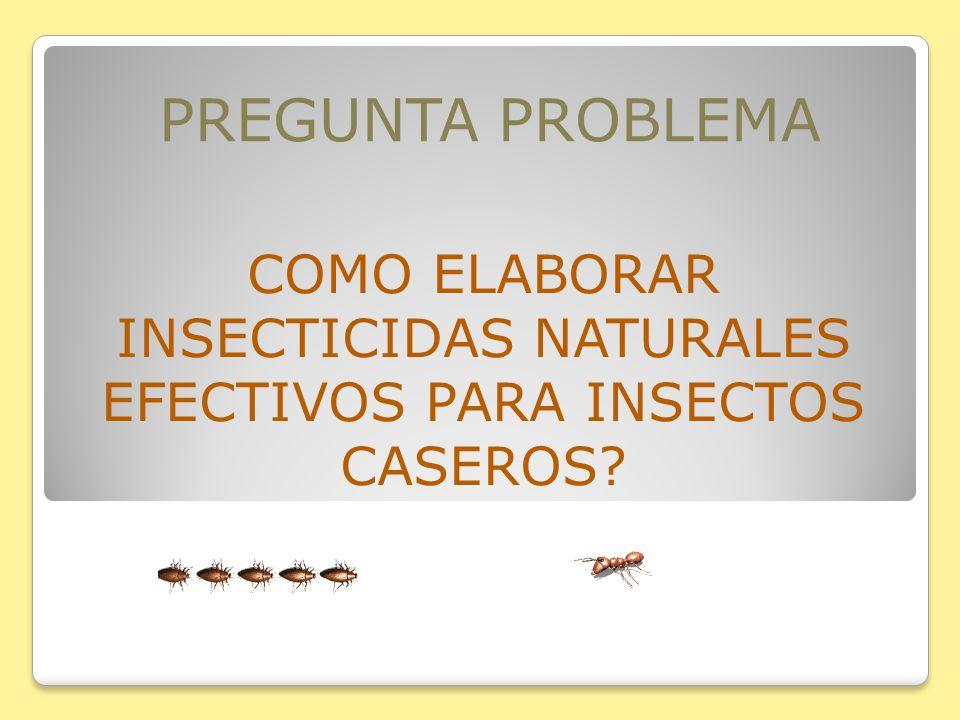 COMO ELABORAR INSECTICIDAS NATURALES EFECTIVOS PARA INSECTOS CASEROS