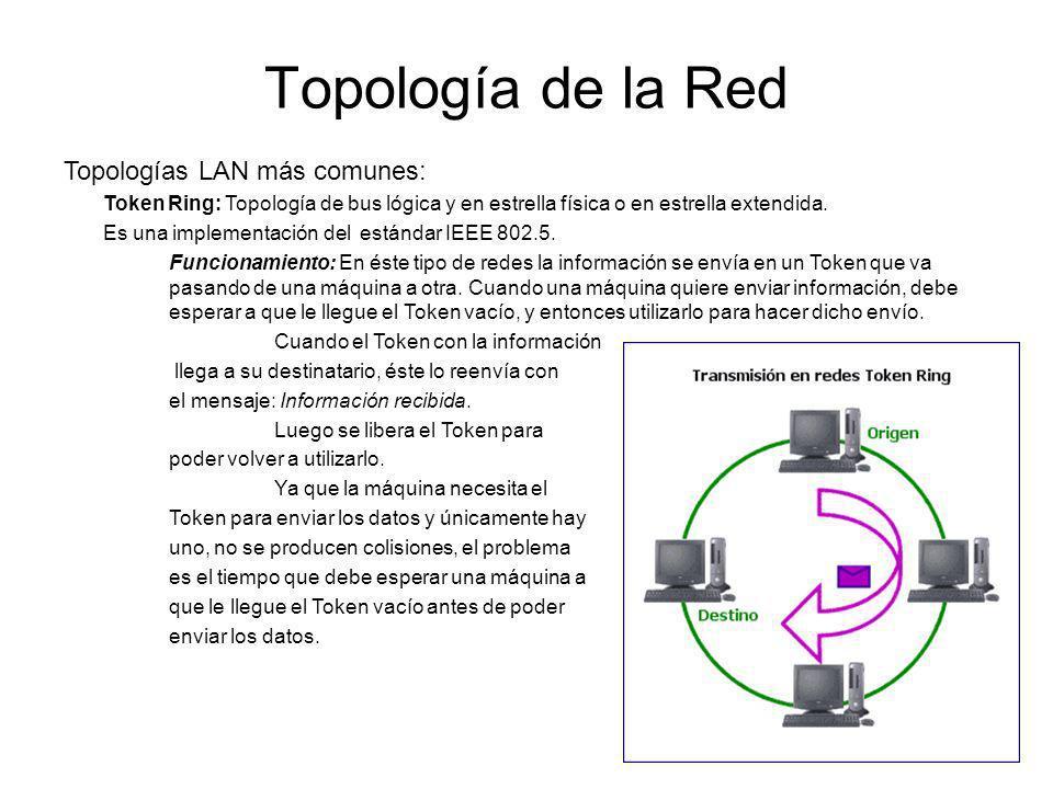 Topología de la Red Topologías LAN más comunes: