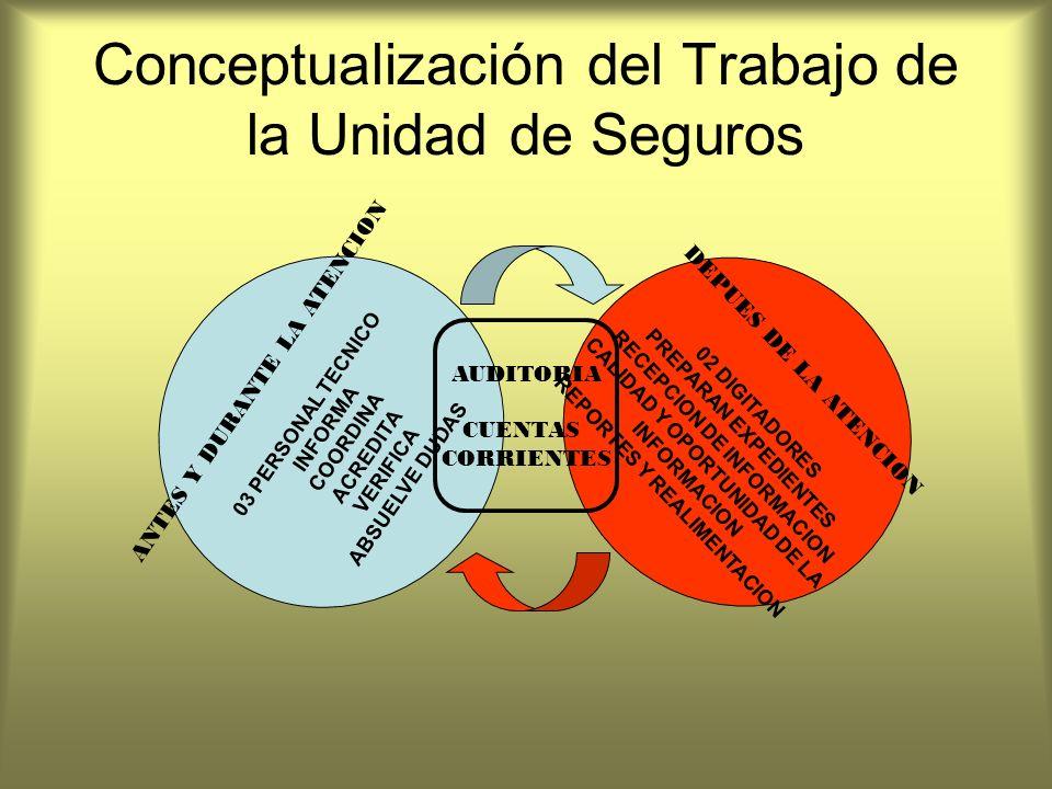 Conceptualización del Trabajo de la Unidad de Seguros