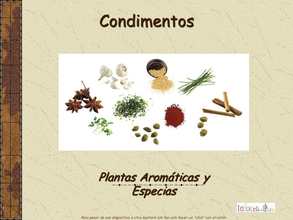Plantas Aromáticas y Especias
