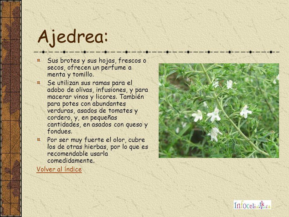 Ajedrea: Sus brotes y sus hojas, frescos o secos, ofrecen un perfume a menta y tomillo.