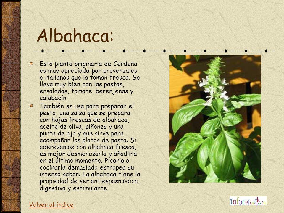 Albahaca: