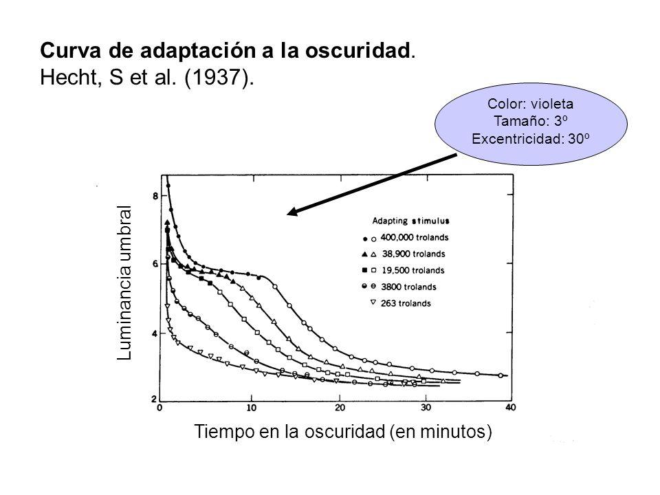 Curva de adaptación a la oscuridad. Hecht, S et al. (1937).