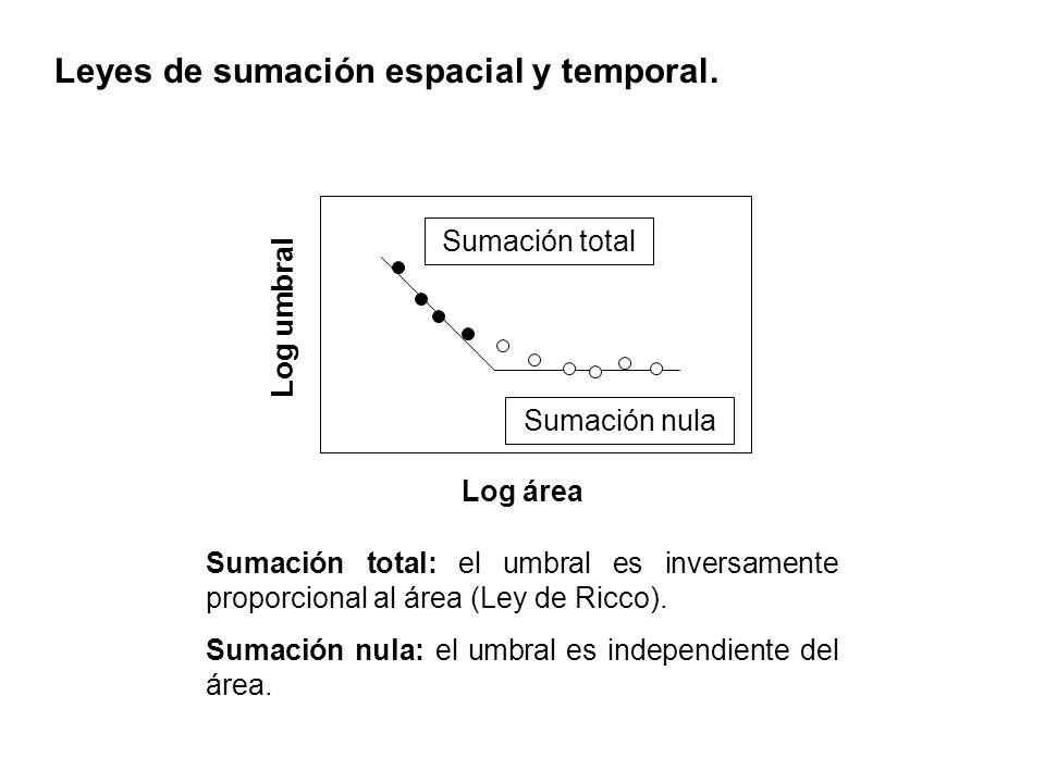 Leyes de sumación espacial y temporal.