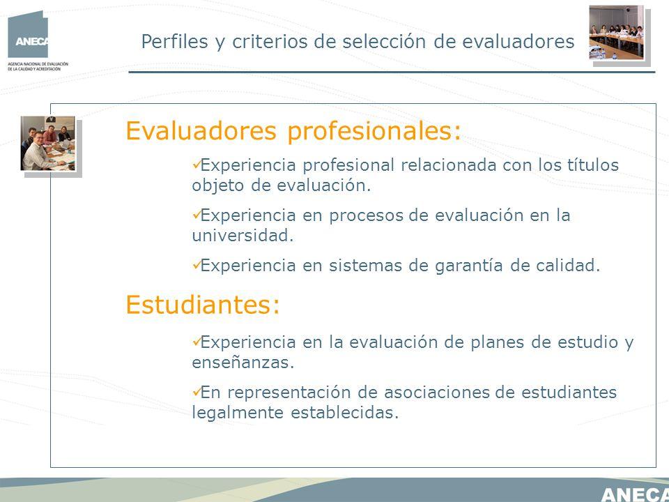 Evaluadores profesionales: