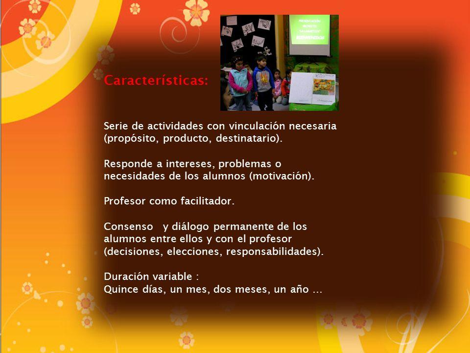 Características: Serie de actividades con vinculación necesaria (propósito, producto, destinatario).