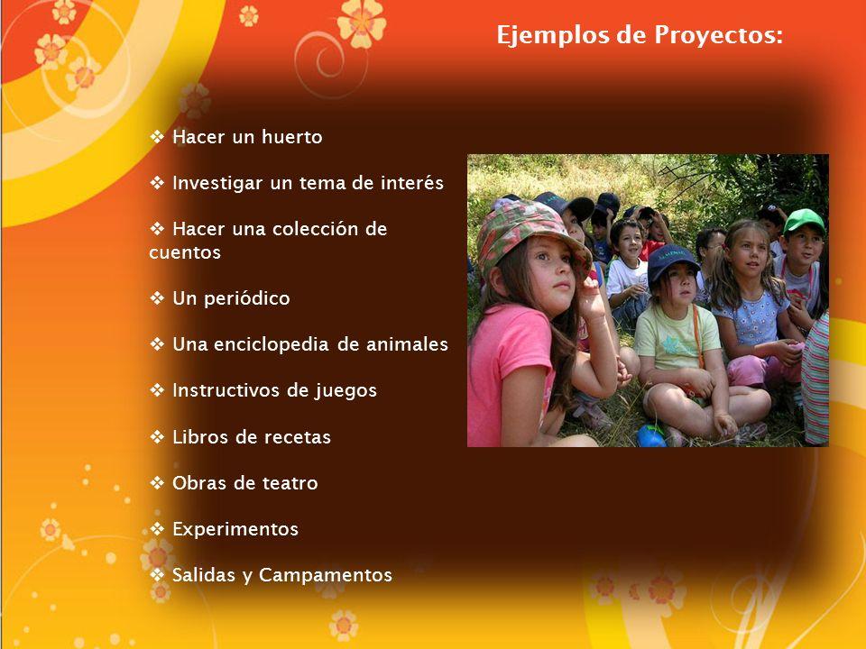 Ejemplos de Proyectos:
