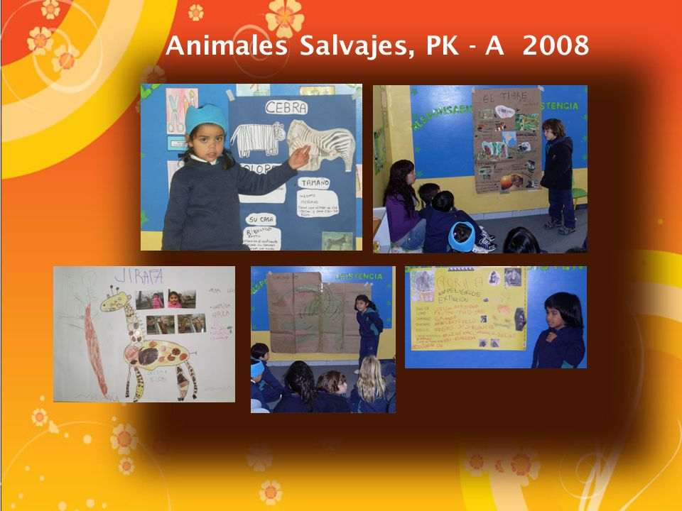 Animales Salvajes, PK - A 2008