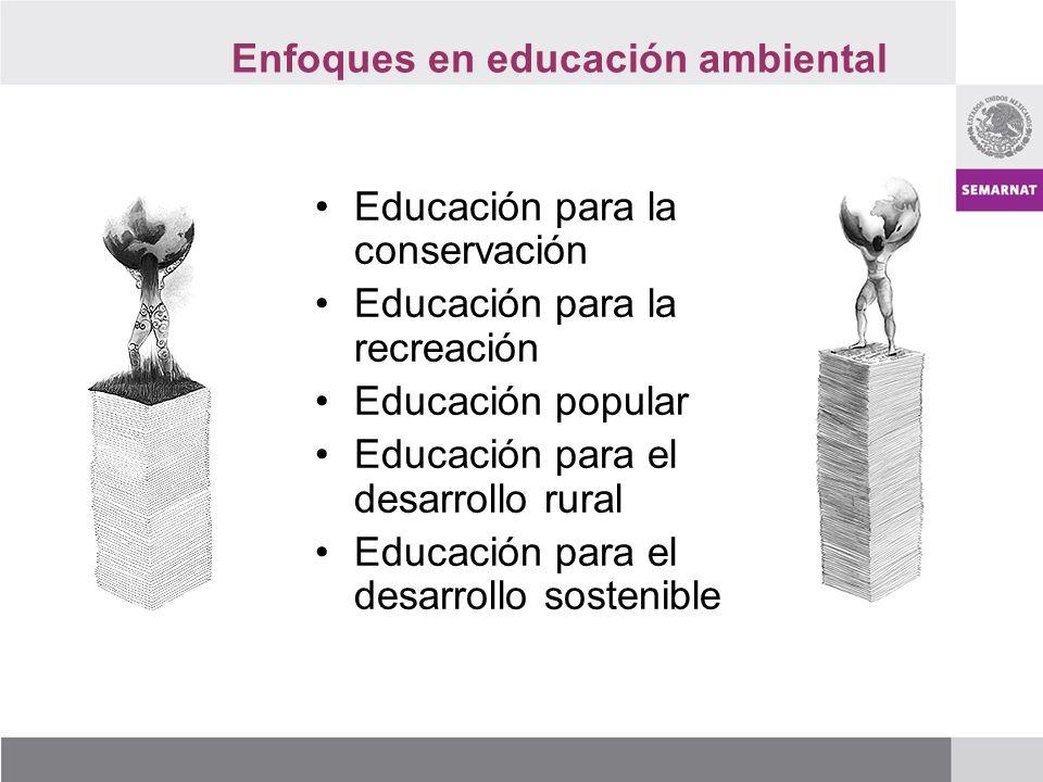 Enfoques en educación ambiental