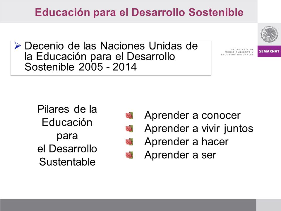 Pilares de la Educación para el Desarrollo Sustentable