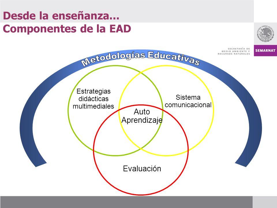 Desde la enseñanza... Componentes de la EAD