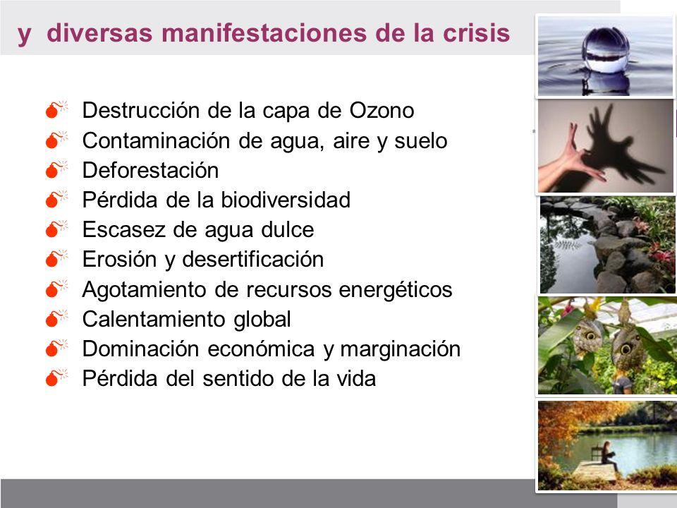 y diversas manifestaciones de la crisis