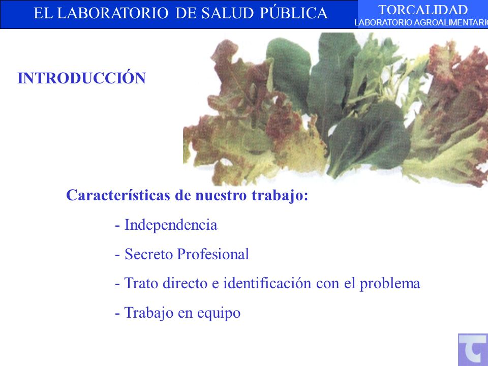 INTRODUCCIÓN Características de nuestro trabajo: - Independencia. - Secreto Profesional. - Trato directo e identificación con el problema.