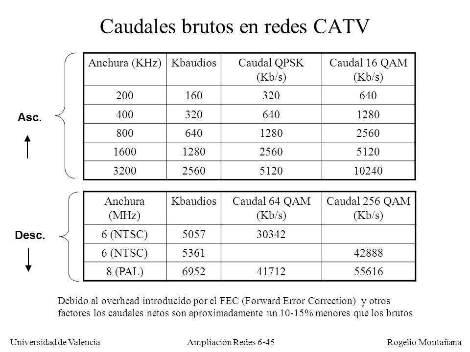 Caudales brutos en redes CATV