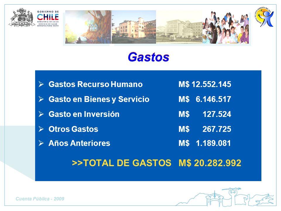Gastos >>TOTAL DE GASTOS M$ 20.282.992