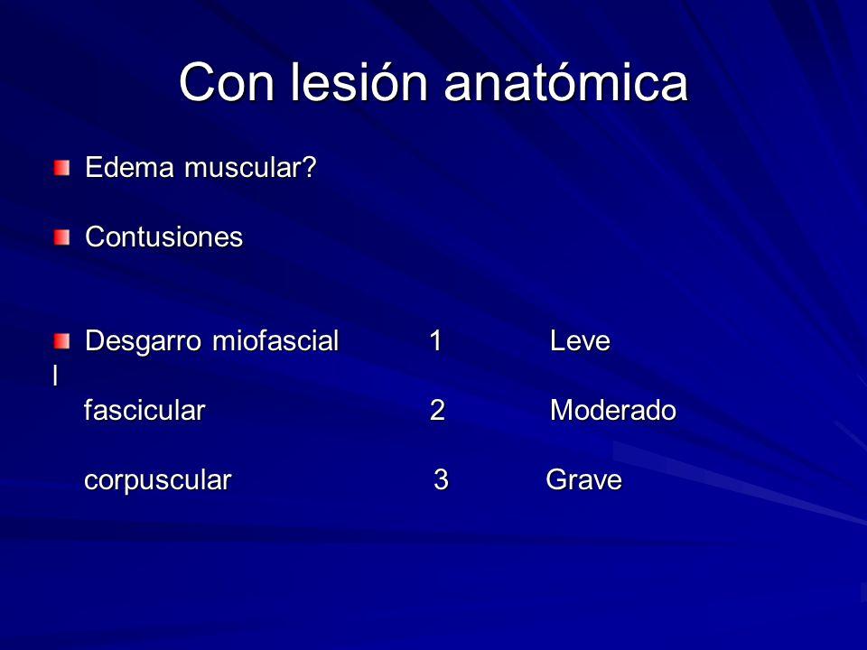 Con lesión anatómica Edema muscular Contusiones