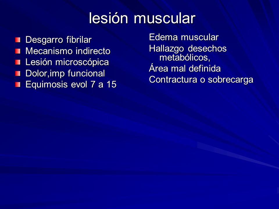 lesión muscular Edema muscular Desgarro fibrilar