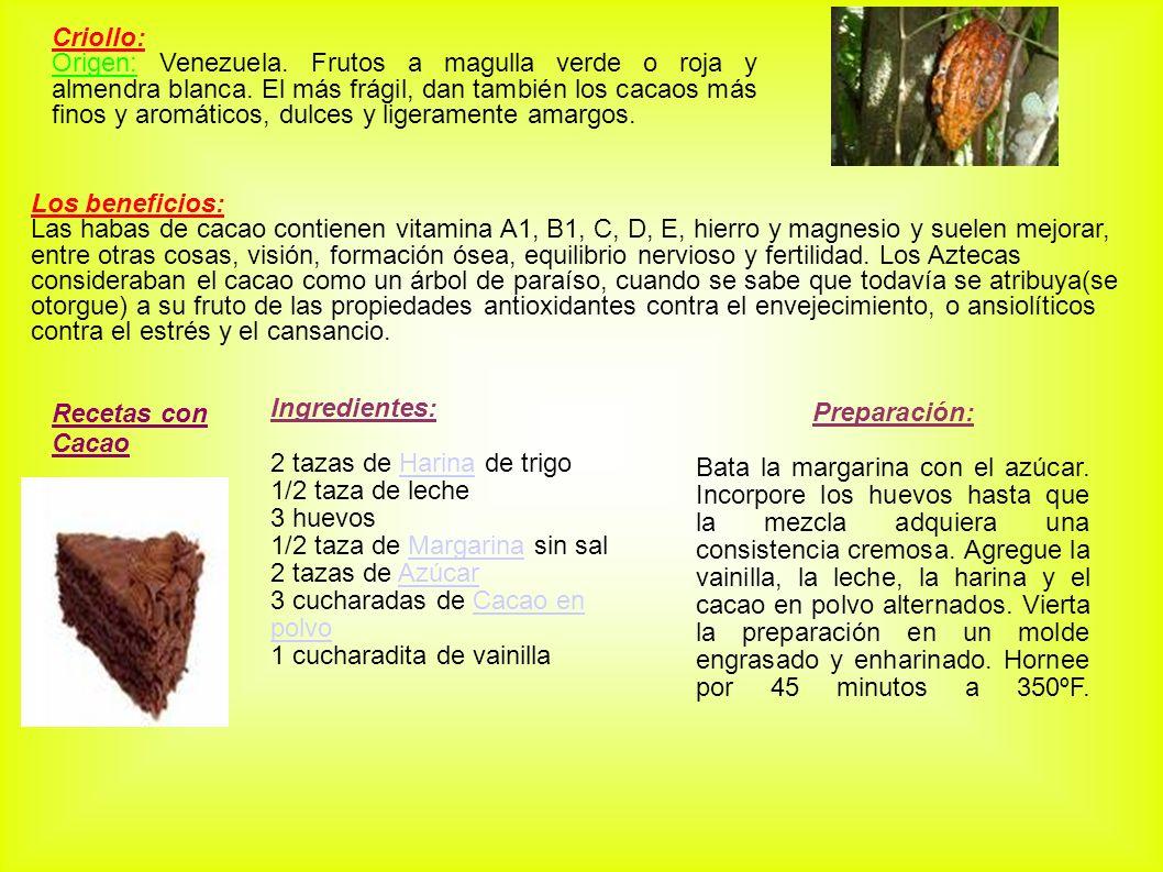 Criollo:
