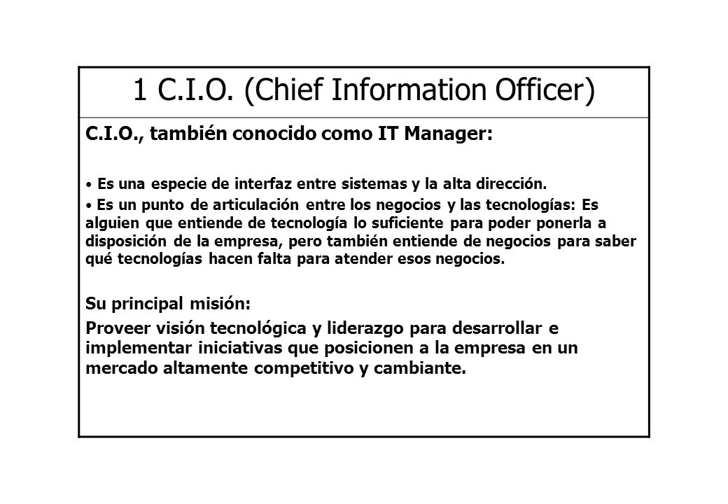 1 C.I.O. (Chief Information Officer)