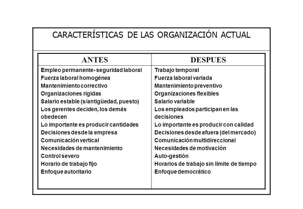 CARACTERÍSTICAS DE LAS ORGANIZACIÓN ACTUAL