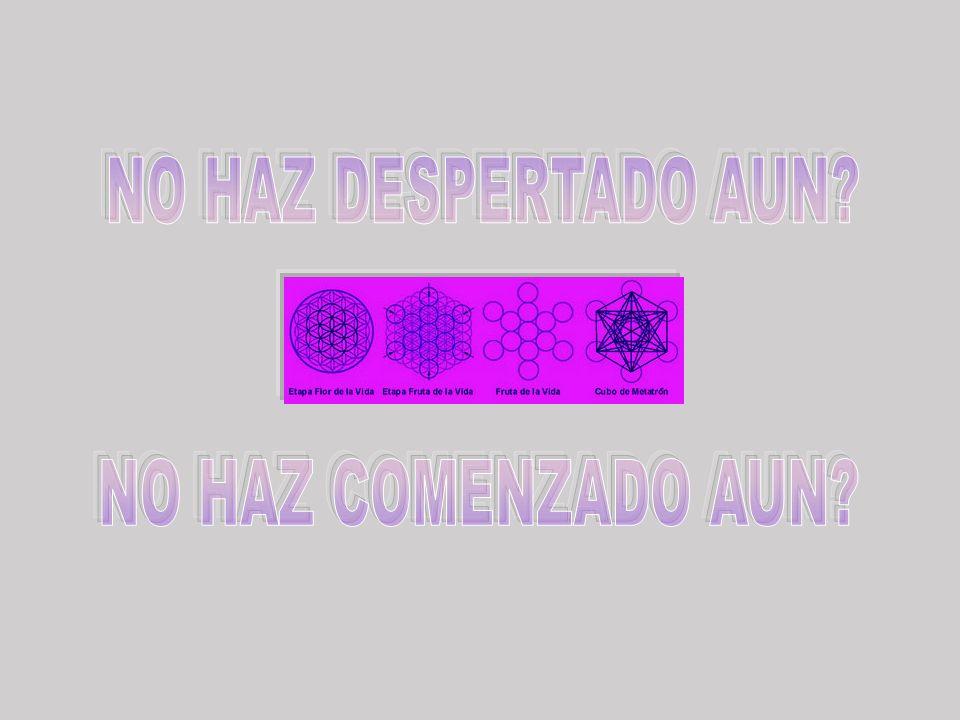 NO HAZ DESPERTADO AUN NO HAZ COMENZADO AUN