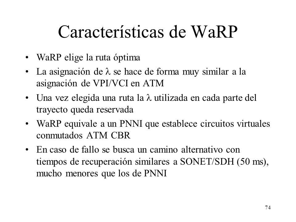 Características de WaRP