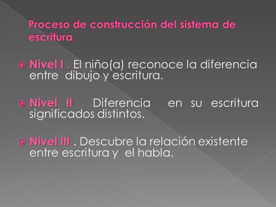 Proceso de construcción del sistema de escritura.