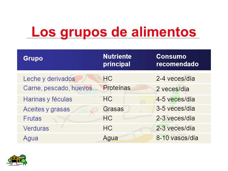 Los grupos de alimentos