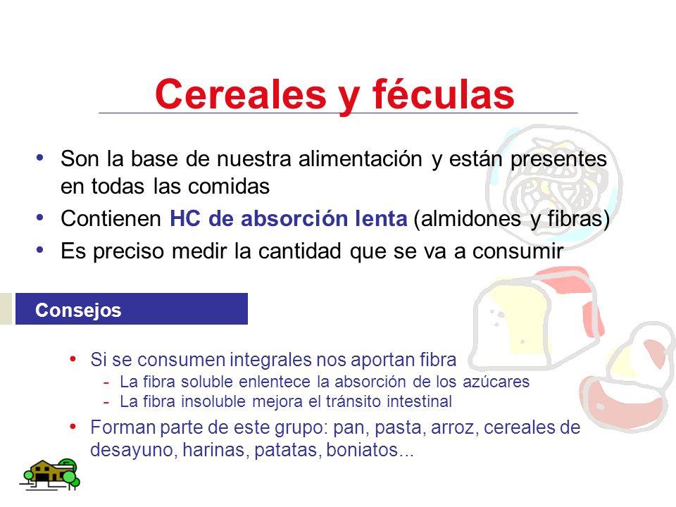 Cereales y féculas Son la base de nuestra alimentación y están presentes en todas las comidas. Contienen HC de absorción lenta (almidones y fibras)