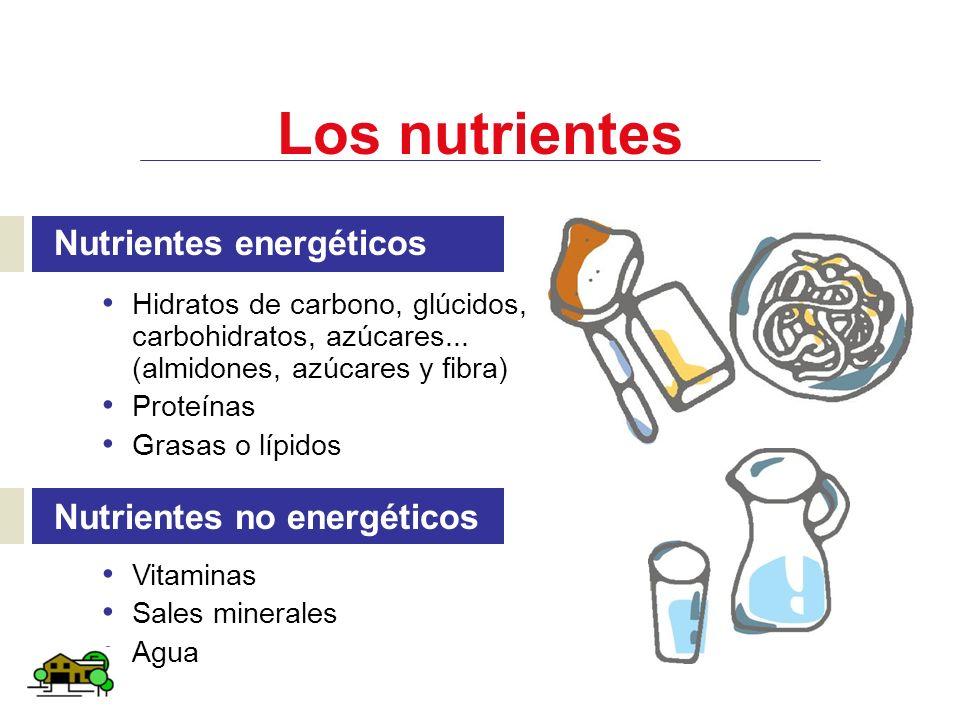 Los nutrientes Nutrientes energéticos Nutrientes no energéticos