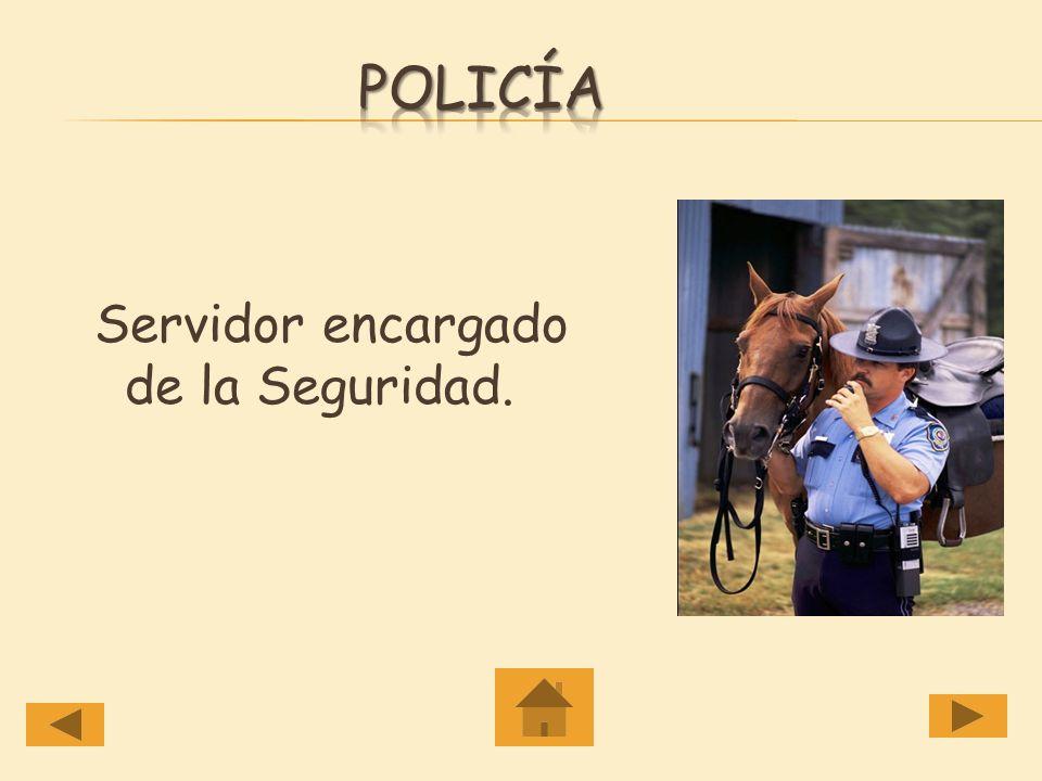 policía Servidor encargado de la Seguridad.