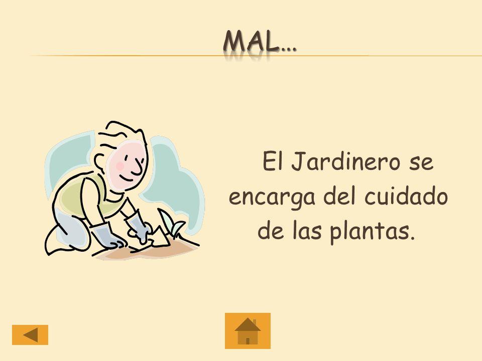 mal… El Jardinero se encarga del cuidado de las plantas.
