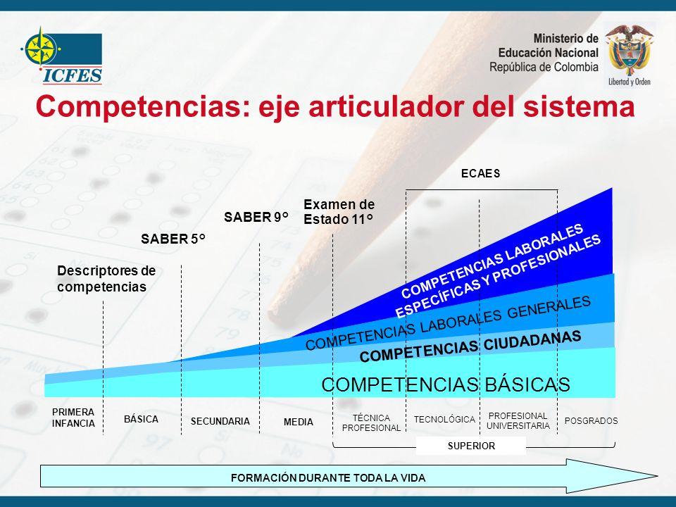 Competencias: eje articulador del sistema