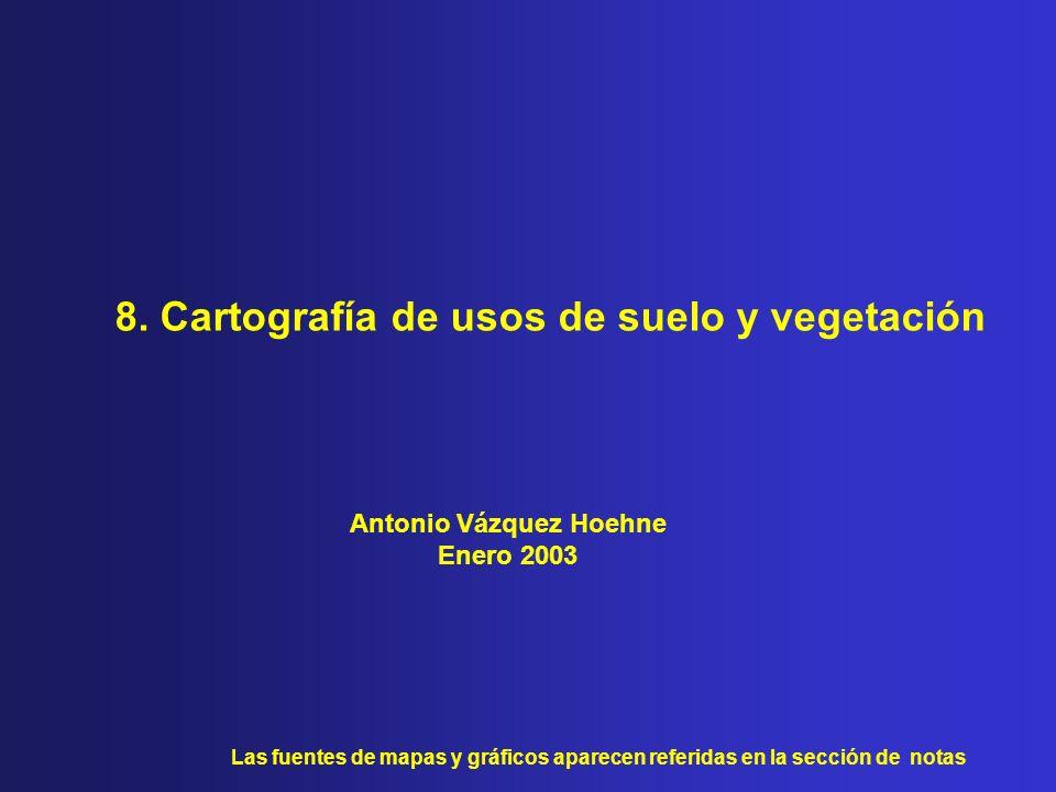 8. Cartografía de usos de suelo y vegetación Antonio Vázquez Hoehne