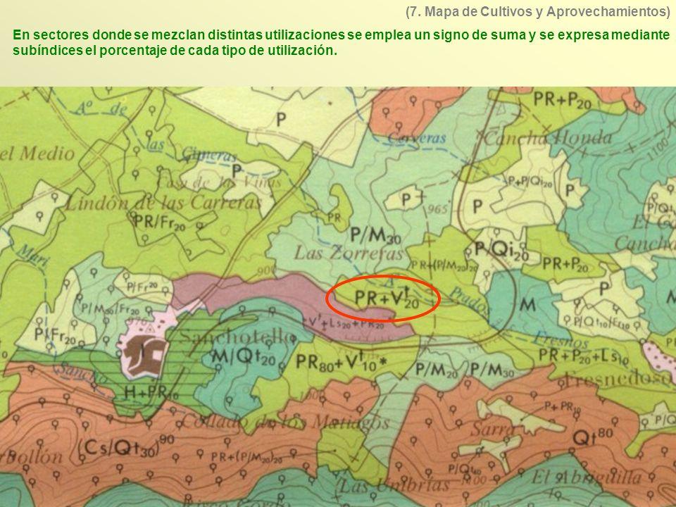 (7. Mapa de Cultivos y Aprovechamientos)