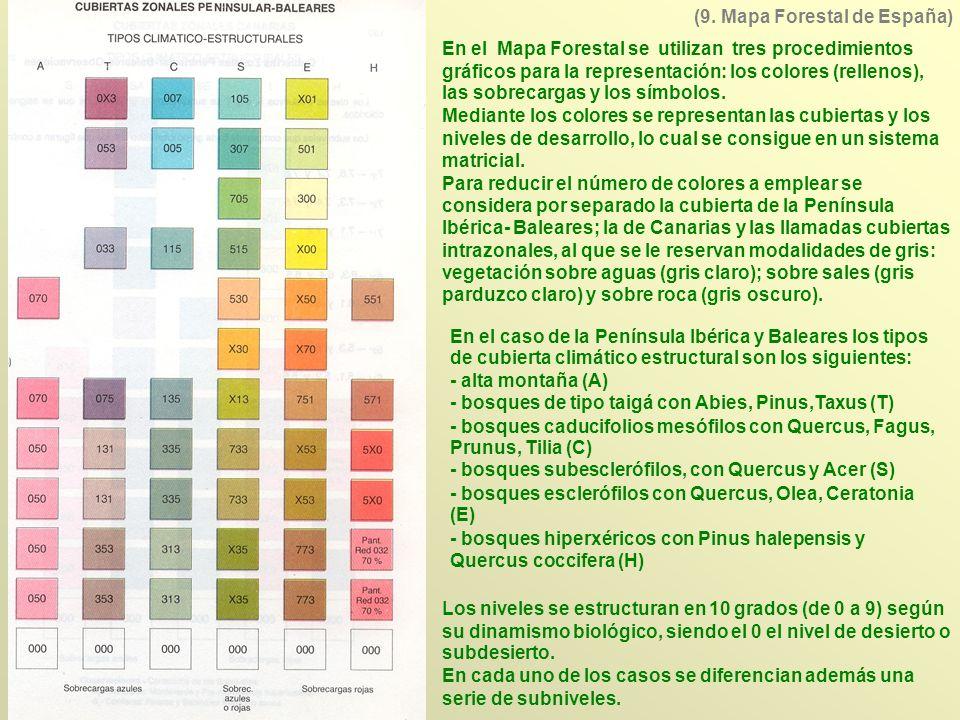 (9. Mapa Forestal de España)