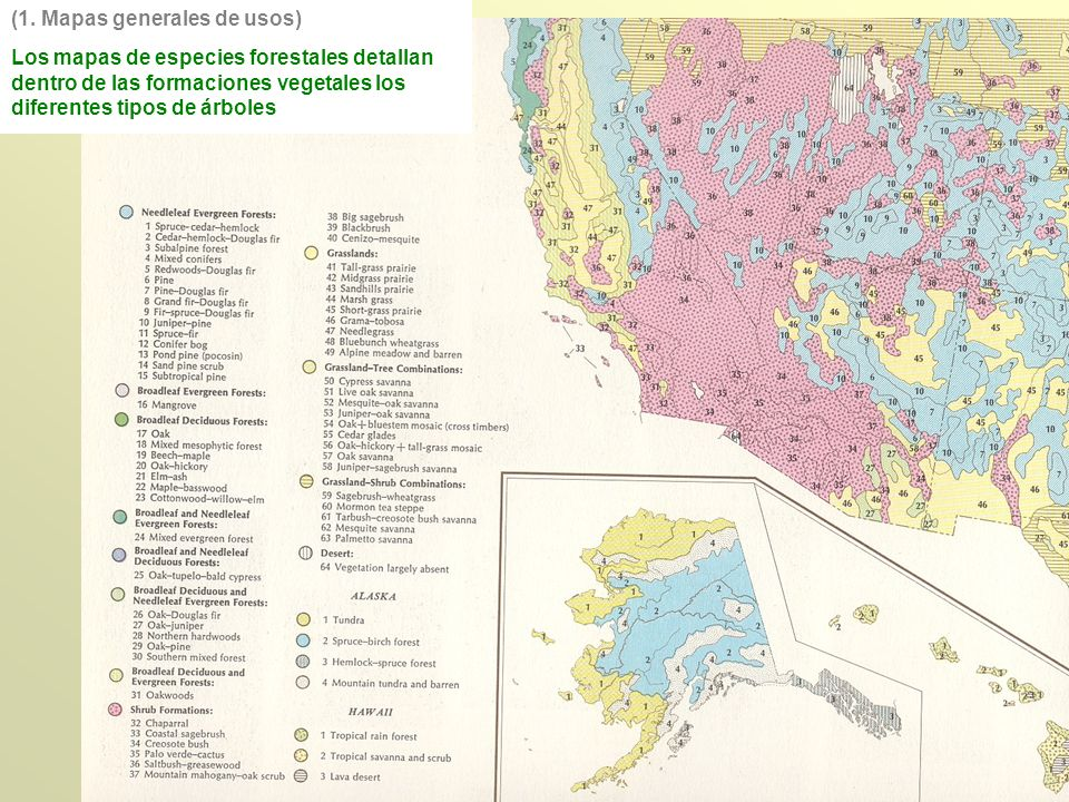 (1. Mapas generales de usos)