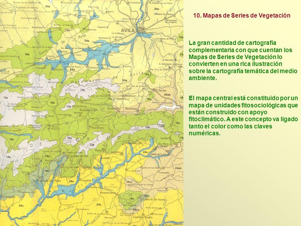 10. Mapas de Series de Vegetación