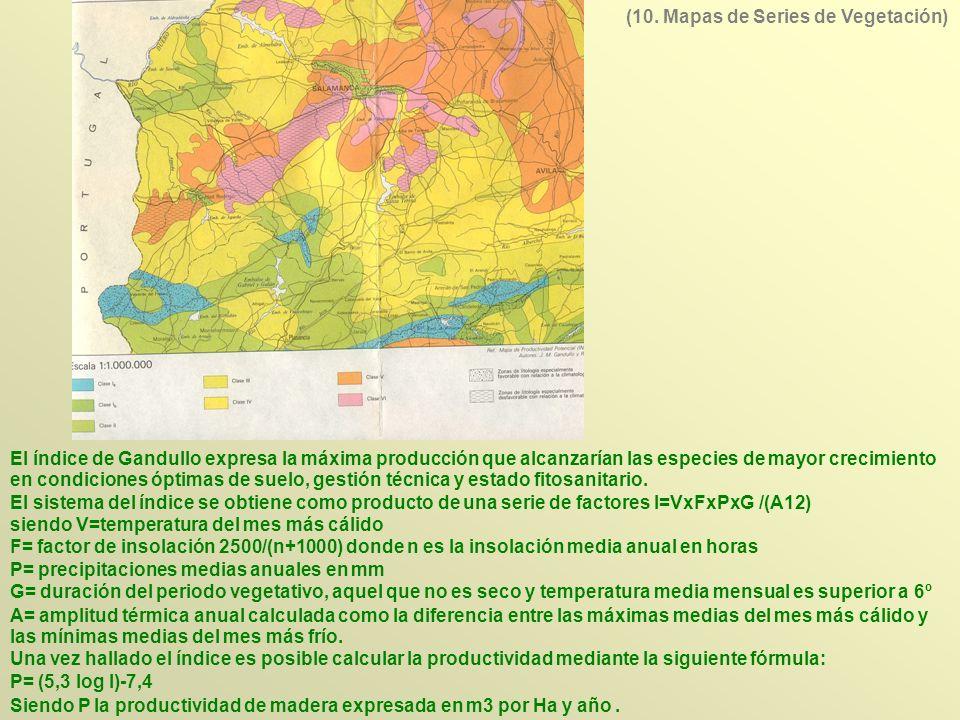 (10. Mapas de Series de Vegetación)