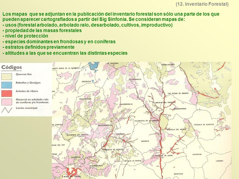 (12. Inventario Forestal)