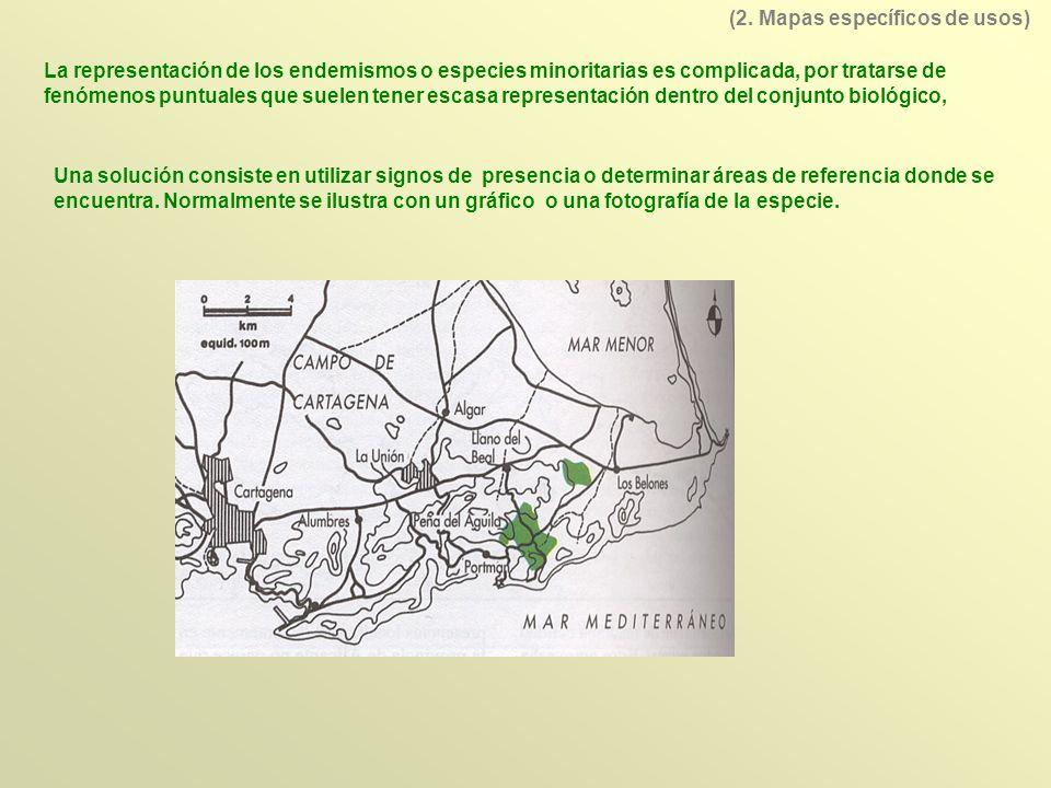 (2. Mapas específicos de usos)