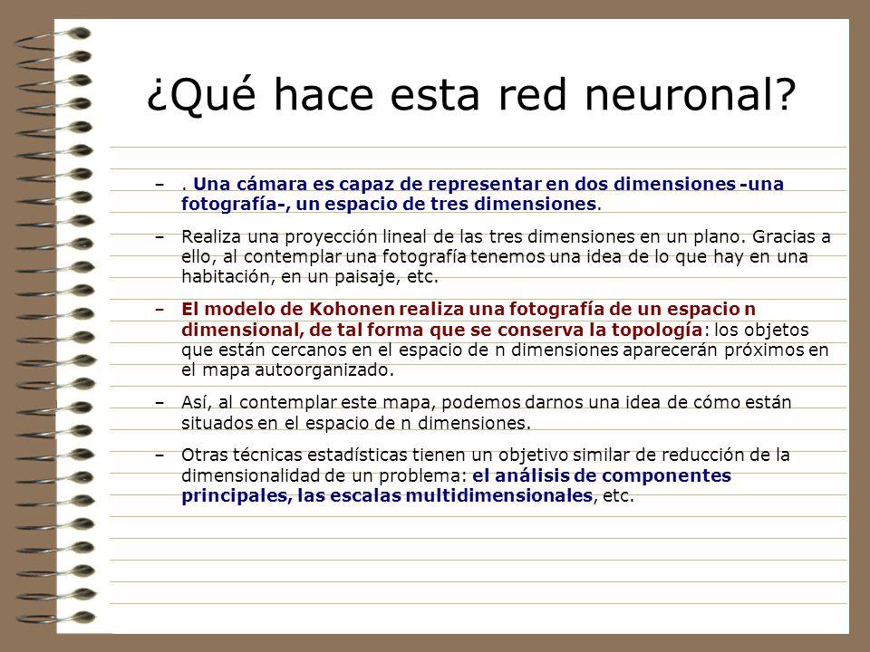 ¿Qué hace esta red neuronal