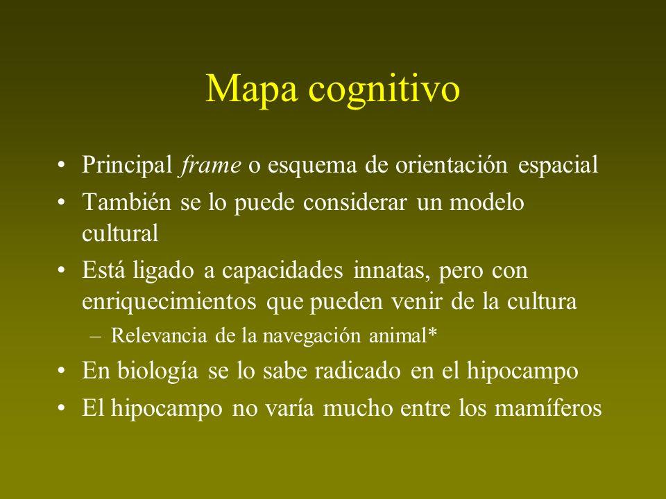 Mapa cognitivo Principal frame o esquema de orientación espacial