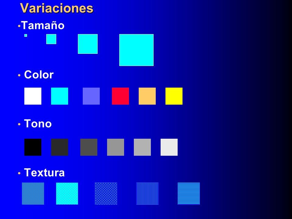 Tamaño Color Tono Textura