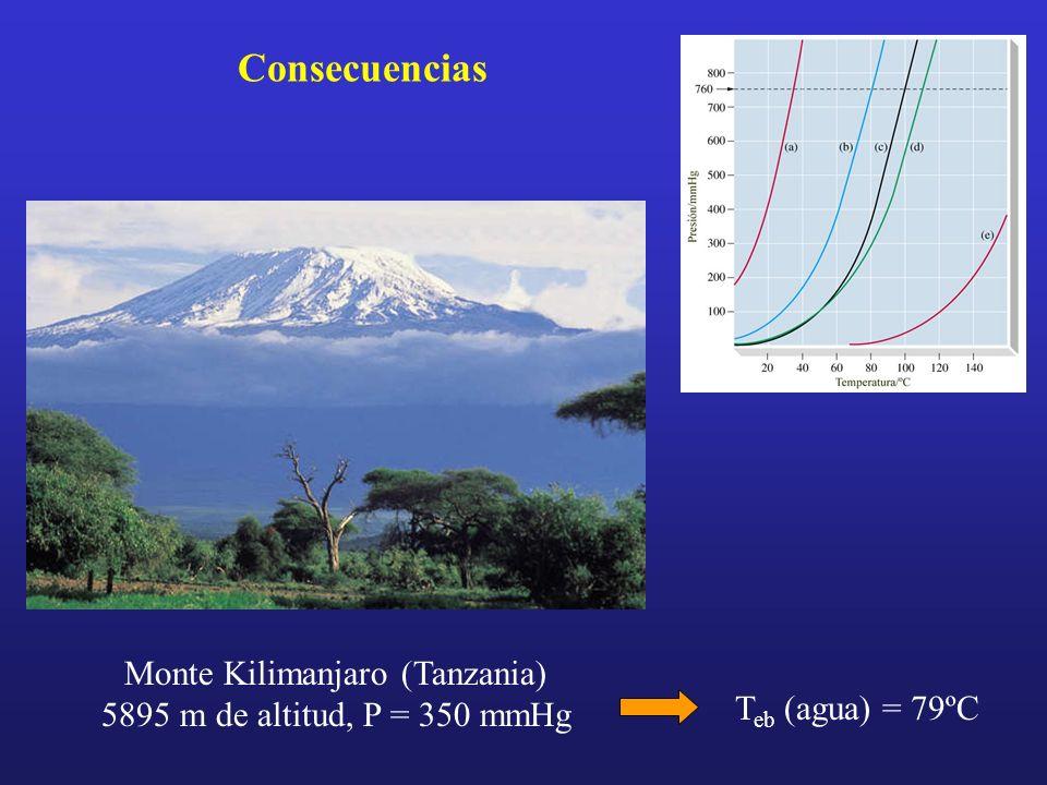 Monte Kilimanjaro (Tanzania) 5895 m de altitud, P = 350 mmHg