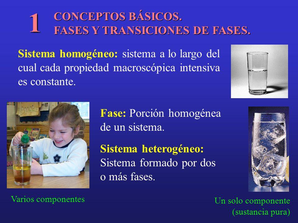 1 CONCEPTOS BÁSICOS. FASES Y TRANSICIONES DE FASES.