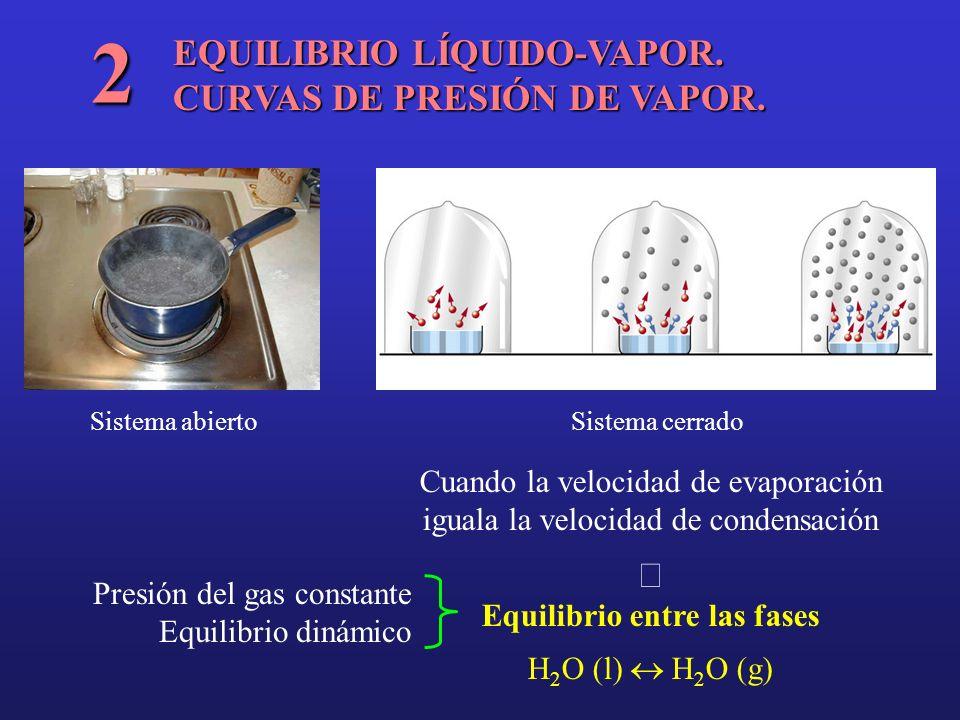 2 EQUILIBRIO LÍQUIDO-VAPOR. CURVAS DE PRESIÓN DE VAPOR. ß